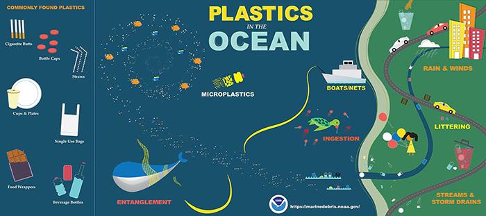 NOAA Plastics in the Ocean Infographic