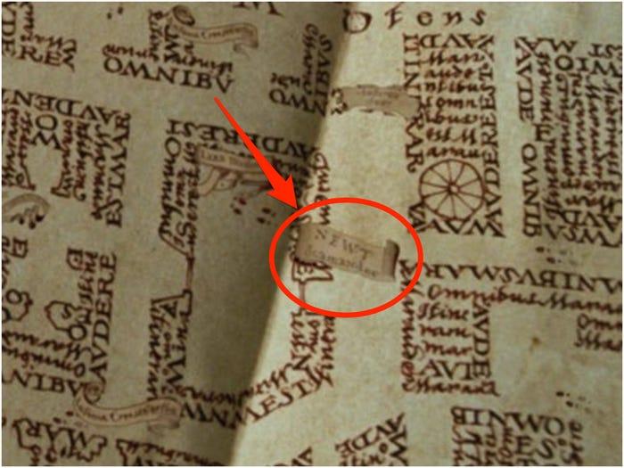 Newt Scamander on Marauder's Map