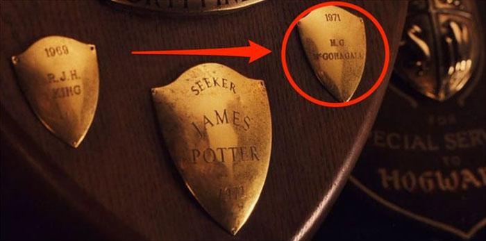 Quidditch Trophy