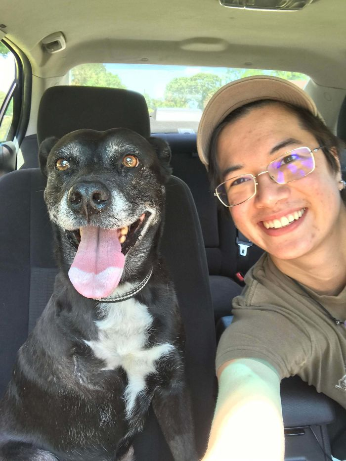 adopted dog smiling with owner