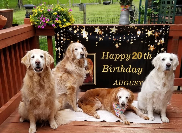 august 20th birthday celebration