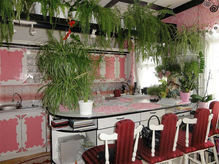 bad kitchen designs jumanji inspired
