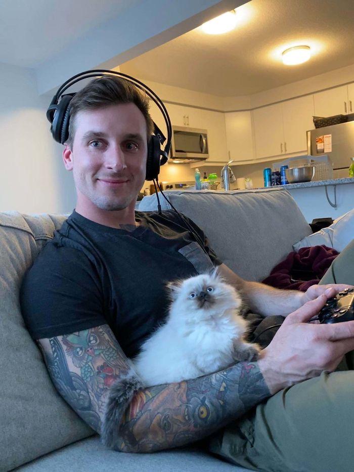 cat finally hopped on boyfriend lap