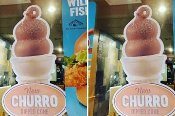 churro dipped cone