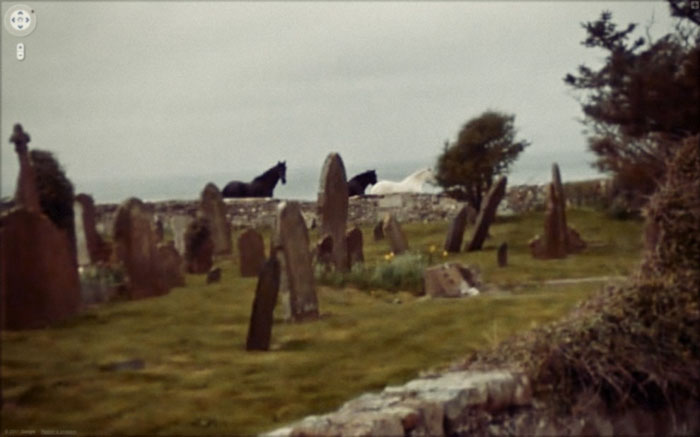 google street view horses at the cemetery