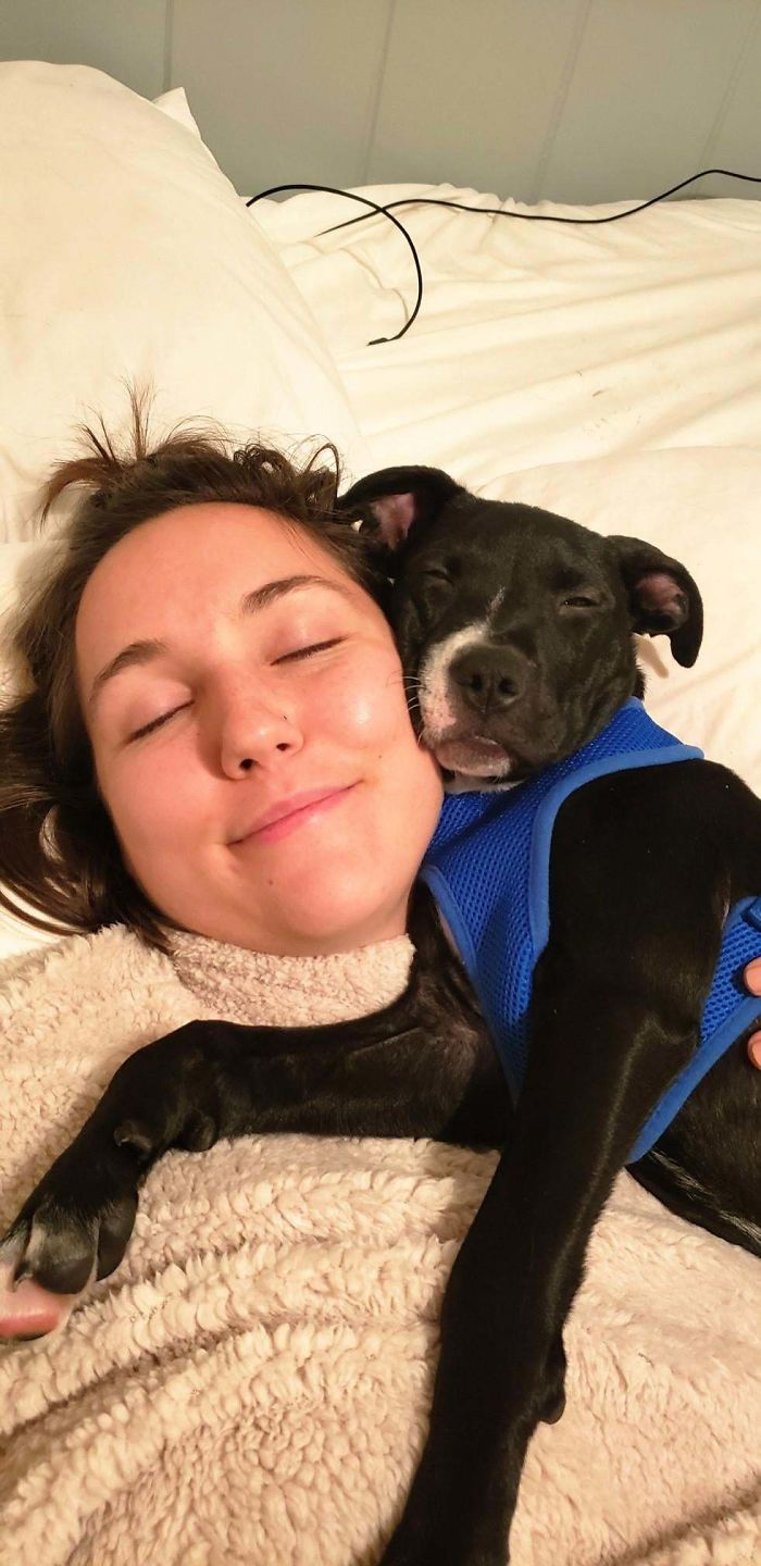 wholesome pet rescue photos puppy loves bedtime