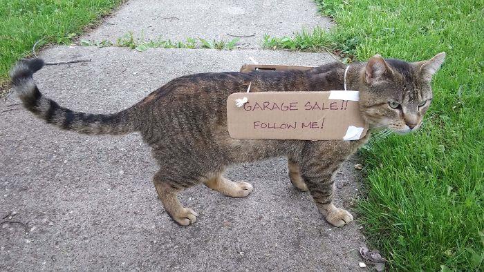 working cats garage sale advertiser