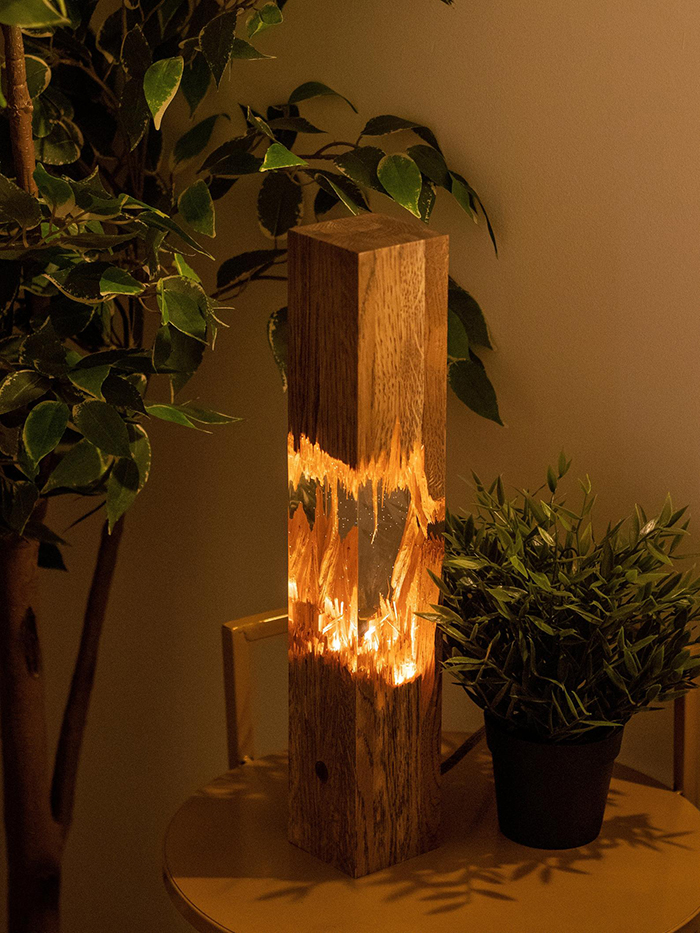 Epoxy Wooden Lamp and Houseplants on Table