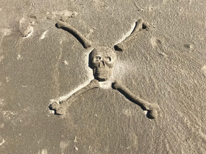 bag o bones beach skeleton crossbone