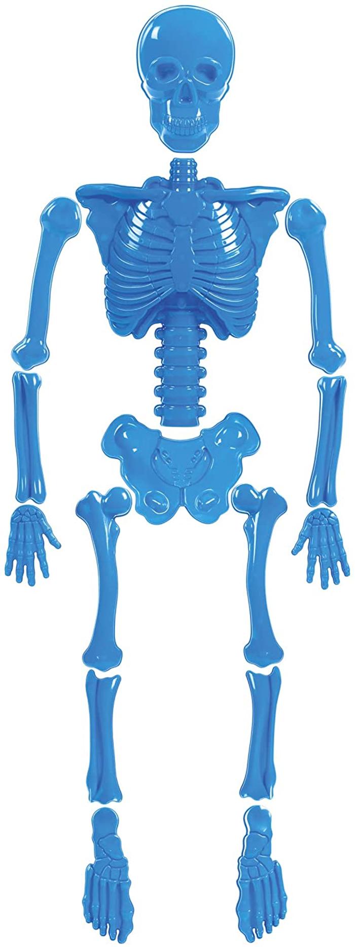 bag o bones beach skeleton sand mold toys