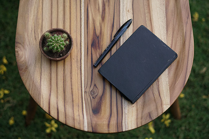 beetle-inspired coffee table wooden surface with notebook and potted plant
