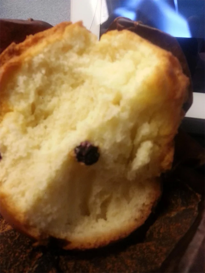 blueberry muffin food fail