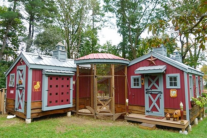 charming chicken coops pink paint
