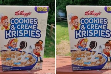 cookies & creme krispies