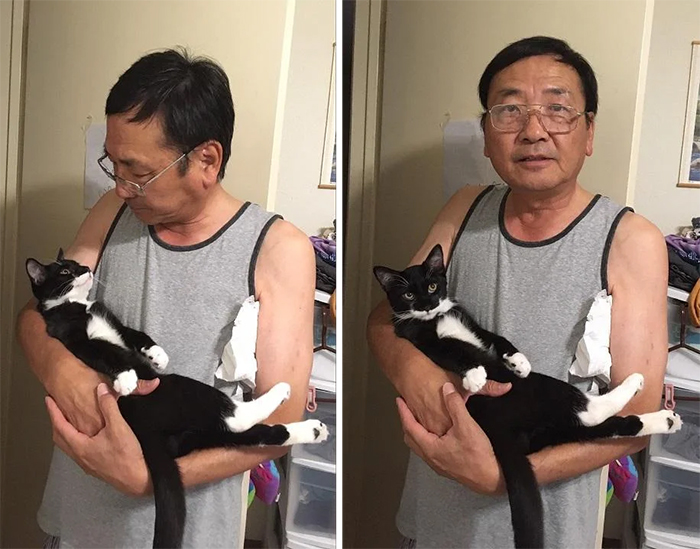 dads and cats inseparable