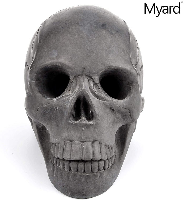 front view of the fireproof skull