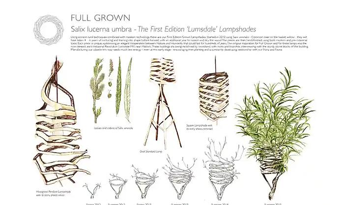 full grown lampshades