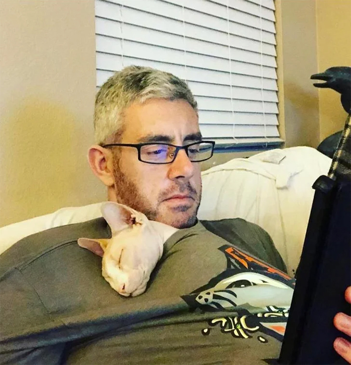 hairless cat hater falls in love with a sphynx