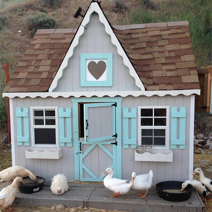 homey poultry house