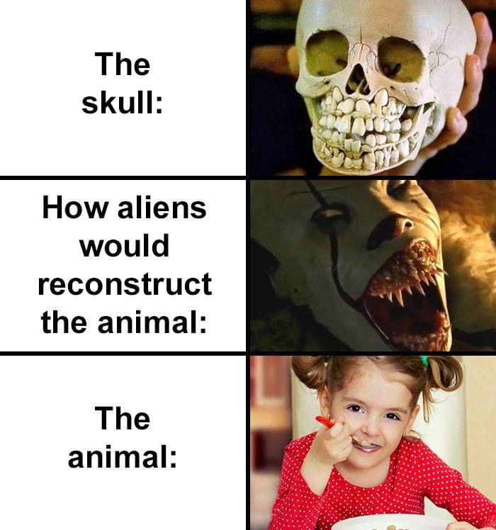 how aliens would reconstruct human girl skull