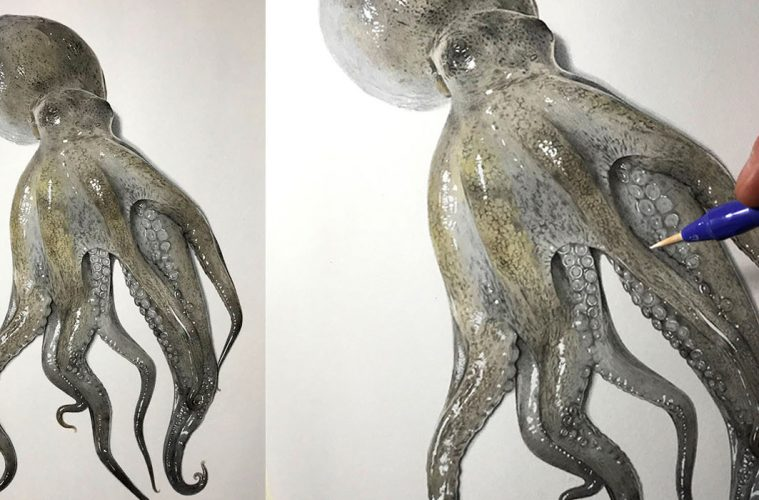 how to draw an octopus