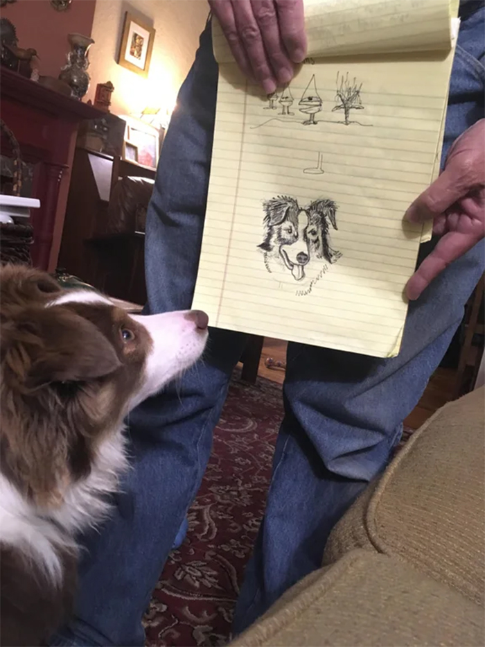 man draws portrait of his dog