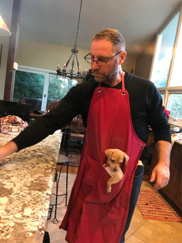 man wears apron with puppy holder
