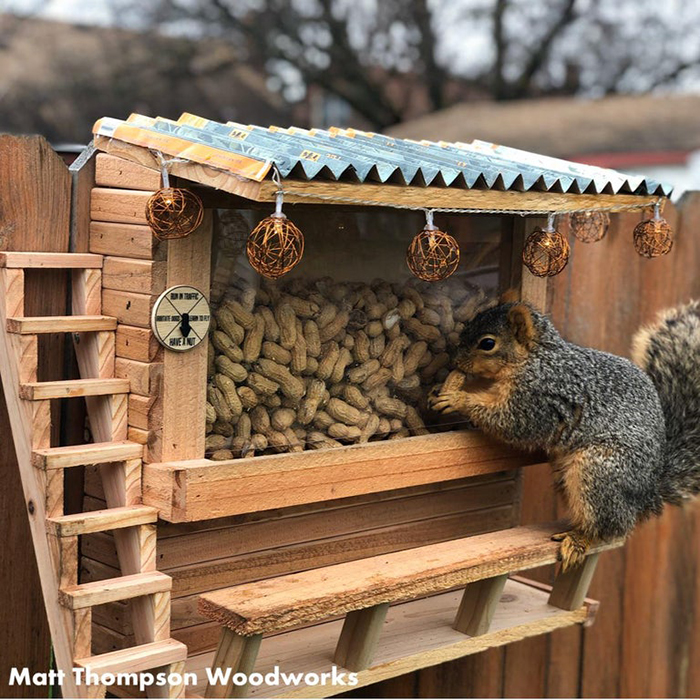 mini bar with peanuts for squirrels