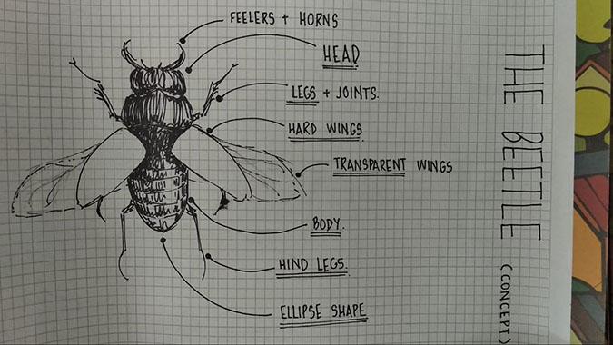 radhika's study sketch of the beetle