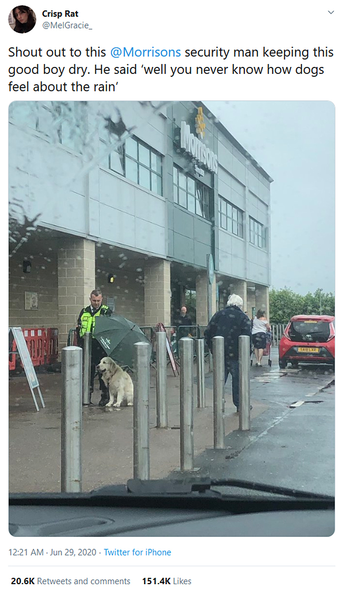 security guard holds umbrella over a dog