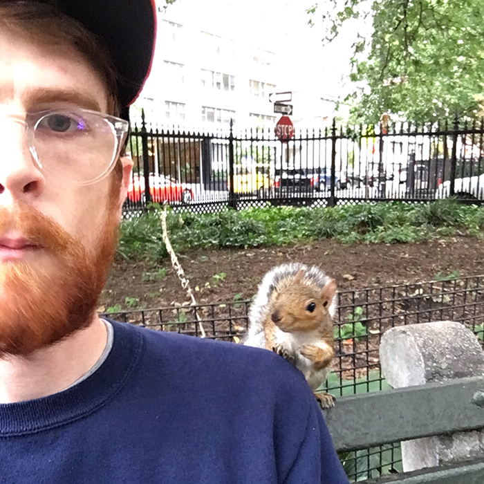 squirrel tapping a man's shoulder