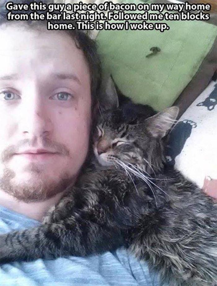stray kitty followed a guy back home