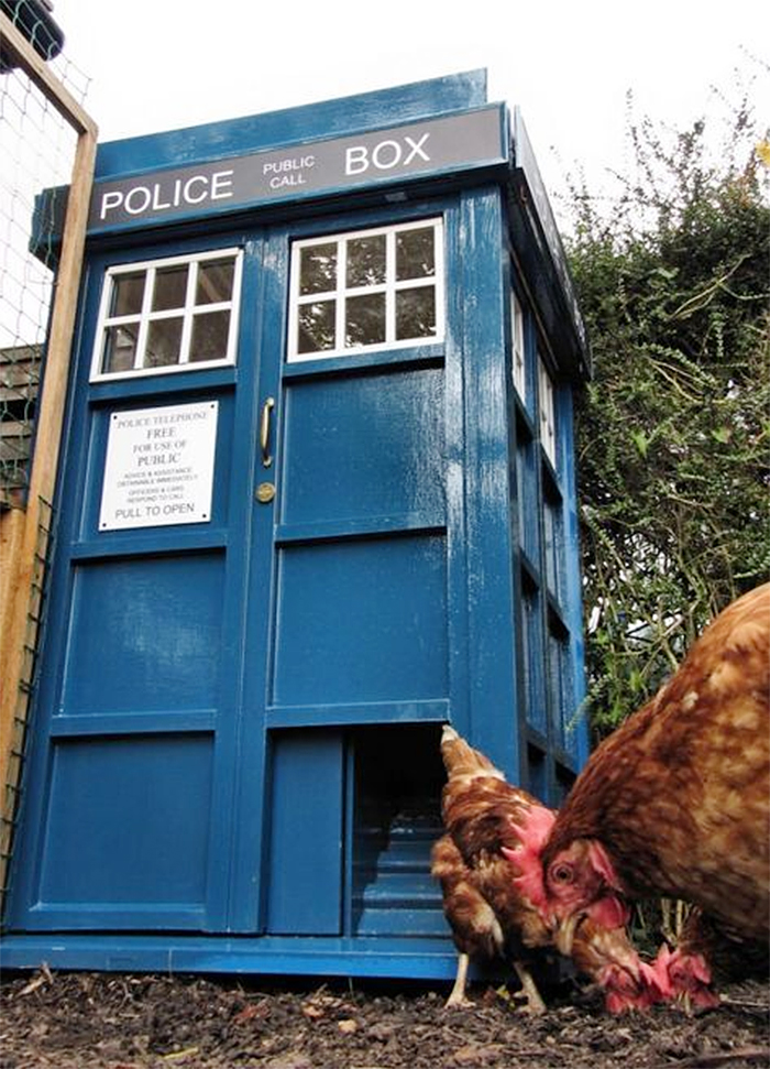 the doctor who inspired poultry house