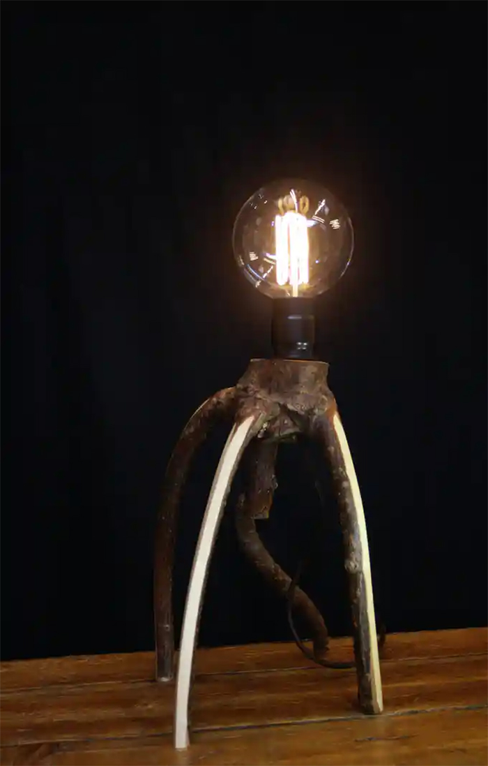tree furniture scuttler table lamp
