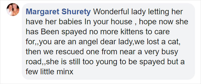 woman welcomes pregnant stray cat comment margaret