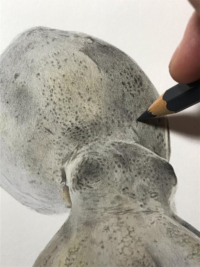 yuki tokuda colored pencil dark grey