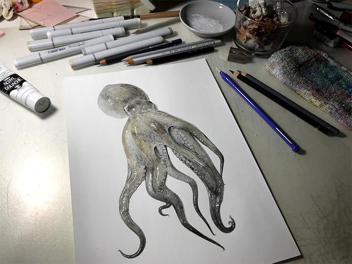 yuki tokuda realistic octopus illustration