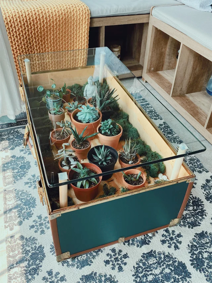 antique trunk turned into table planter