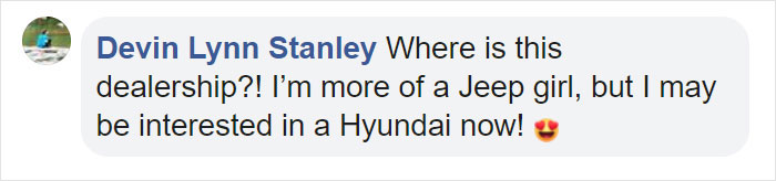 devin lynn stanley facebook comment on stray dog employed by hyundai brazil