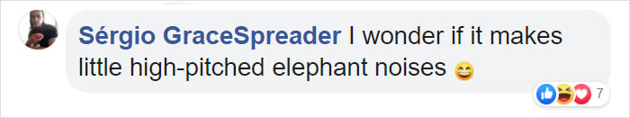 elephant shrew facebook comment high-pitched noise