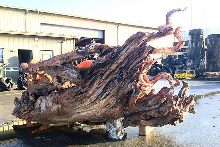 giant sea creature wooden sculpture by jeffrey michael samudosky