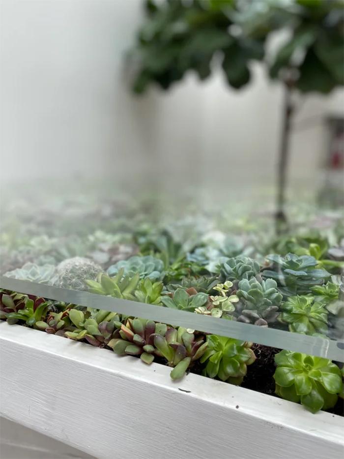 glasstop table planter