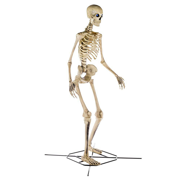 home depot home accents holiday 12-foot skeleton side