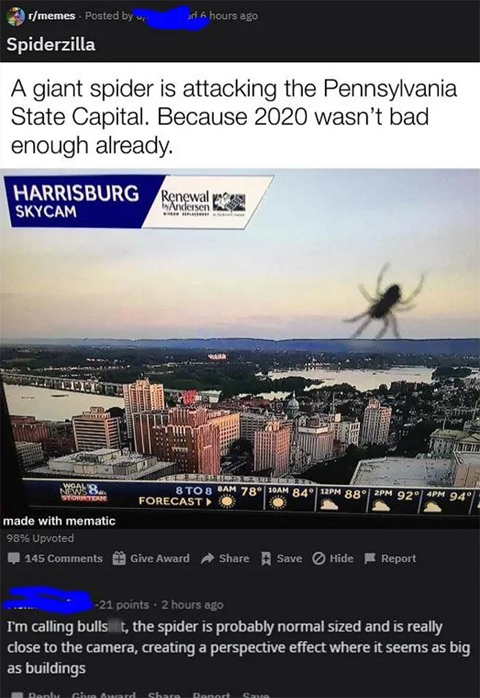 people who missed the joke fake spiderzilla