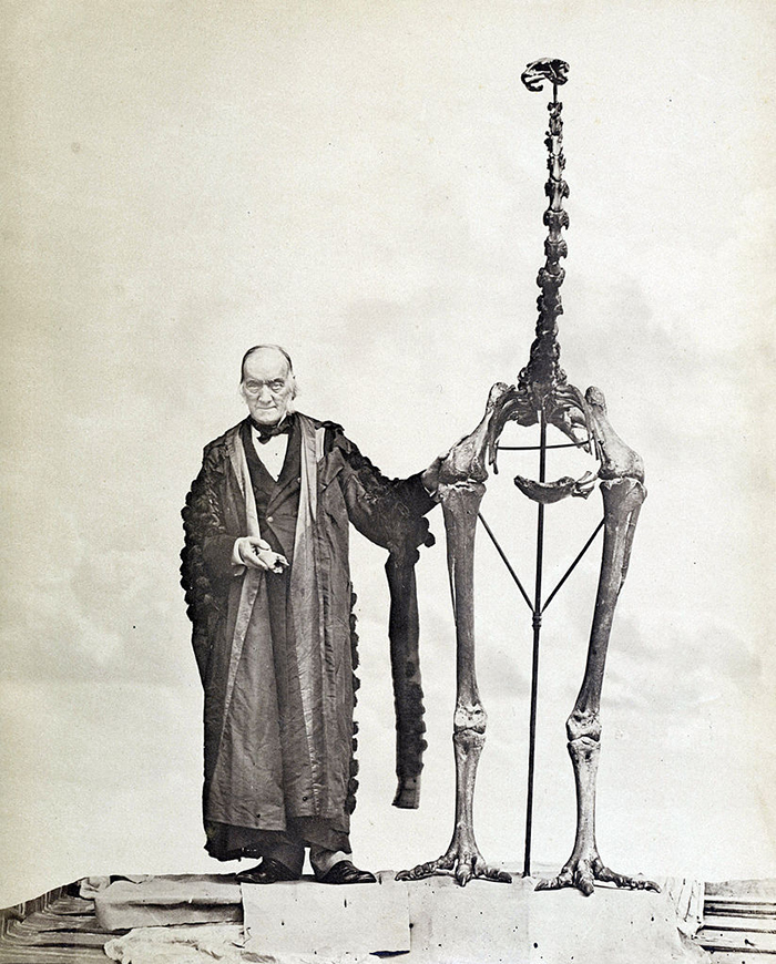 sir richard owen holding a moa fossil complete with bird claw