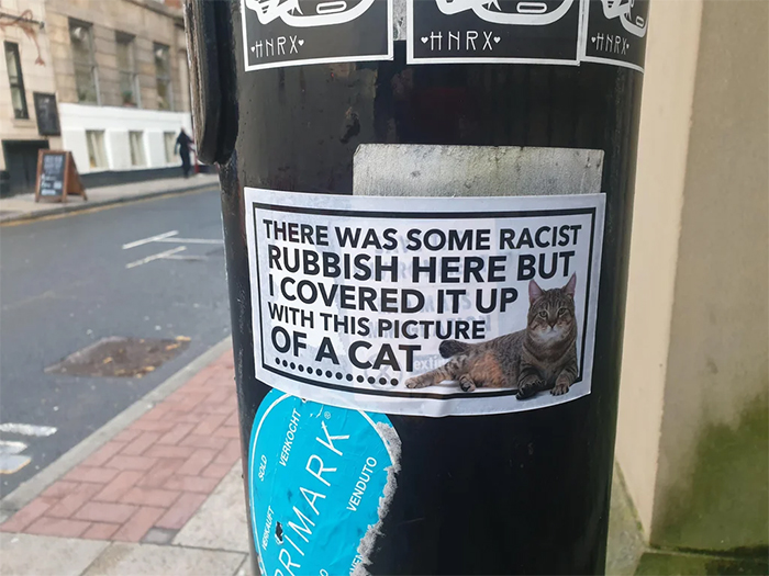 cat poster covers racist rubbish