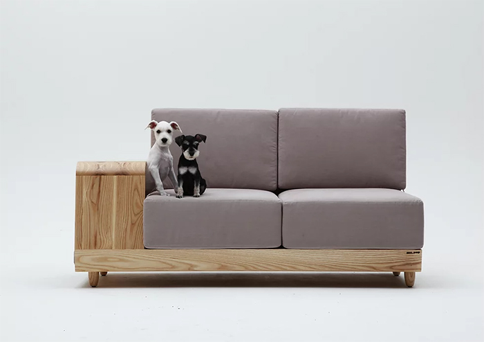 dog house couch pet-friendly furniture