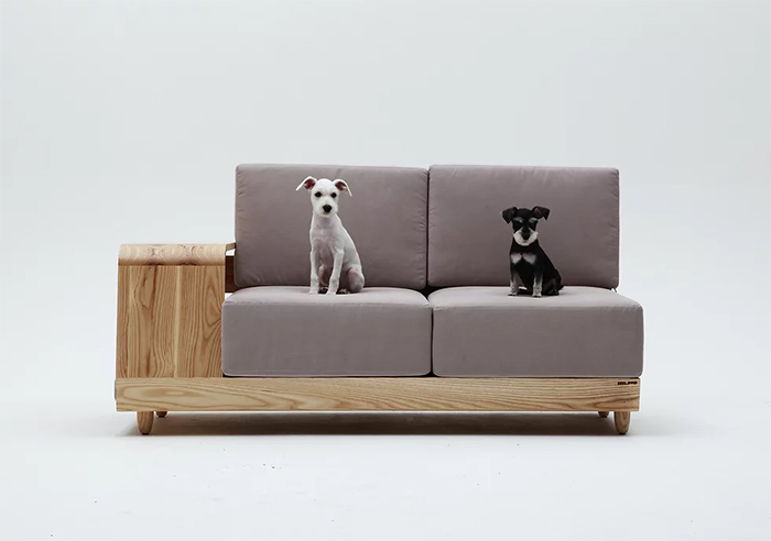 dog house couch