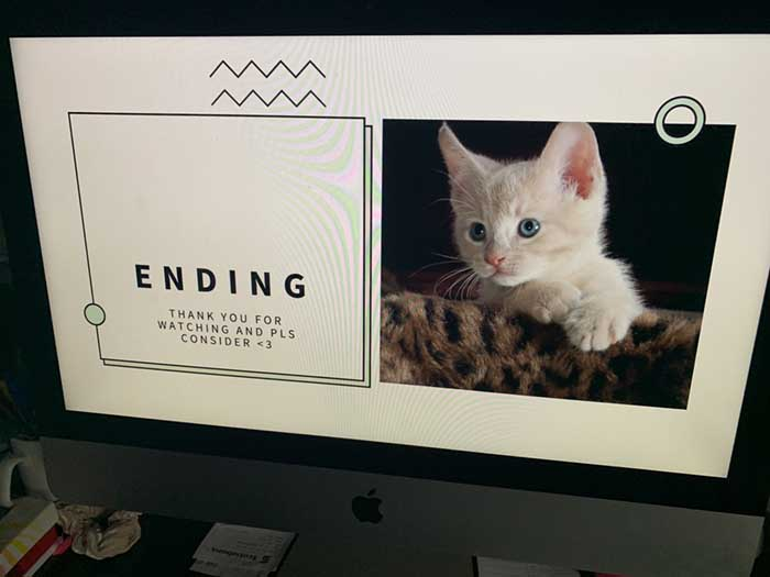 end slide of the pro-pet powerpoint presentation
