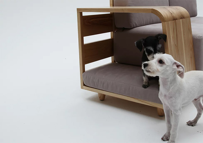 sofa and pet house in one
